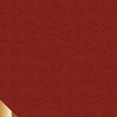 bibo shingles